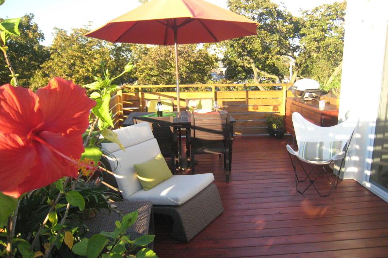 Appartement outremont avec jolie terrasse sur for Appartement avec terrasse sur le toit